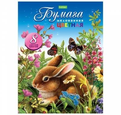 Бумага цветная А4 мелованная 8л 8цв Hatber Зайчонок с бабочкой