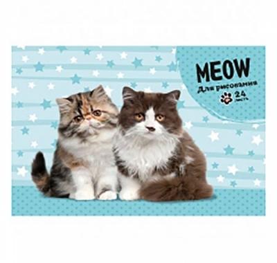 Альбом А5 24л Проф-Пресс Два пушистых котика